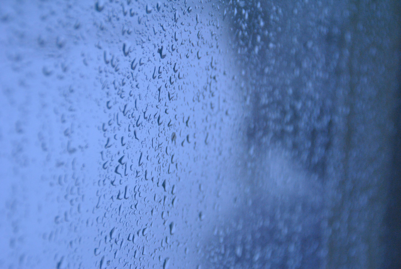 Regn mot rutan