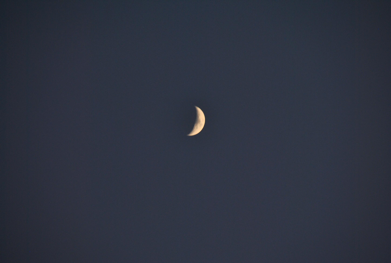 Månskäran