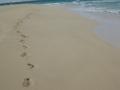 Spår i sanden