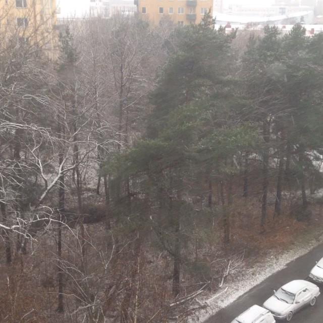 Snowfall in hyperlapse